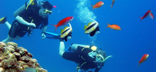 PADI Advanced Open Water Diver Certification - Key West Scuba Diving